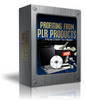 Thumbnail Profiting From PLR Product - From Start To Finish